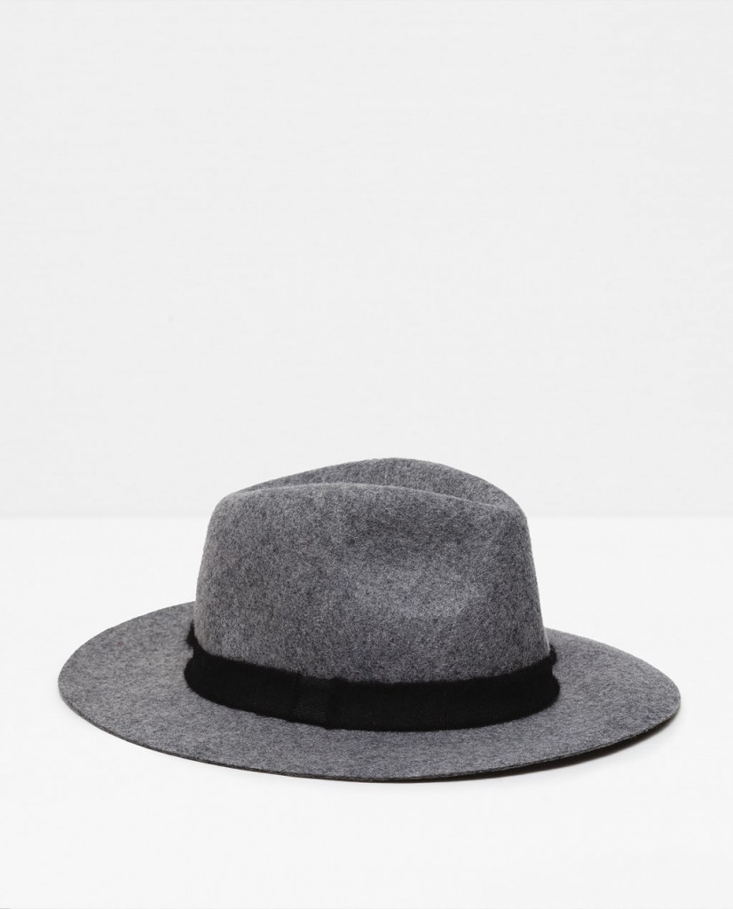 2015 winter Zara hat